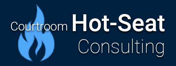 hot seat consulting